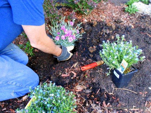 planting flowers in landscape