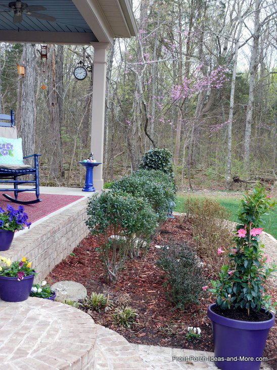 original landscaping with undesirable shrubs